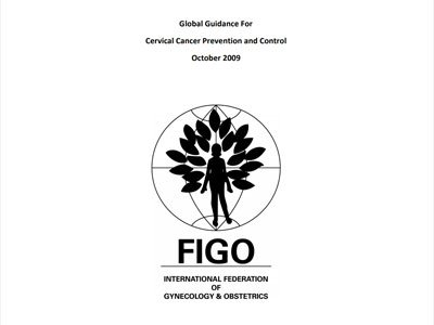 Global Guidance for Cervical Cancer Prevention and Control (Oct 2009) pdf 8