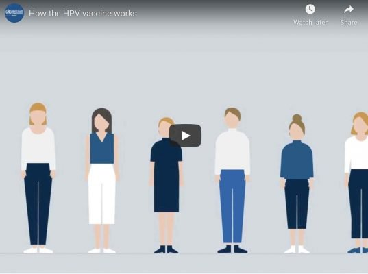 How the HPV vaccine Works